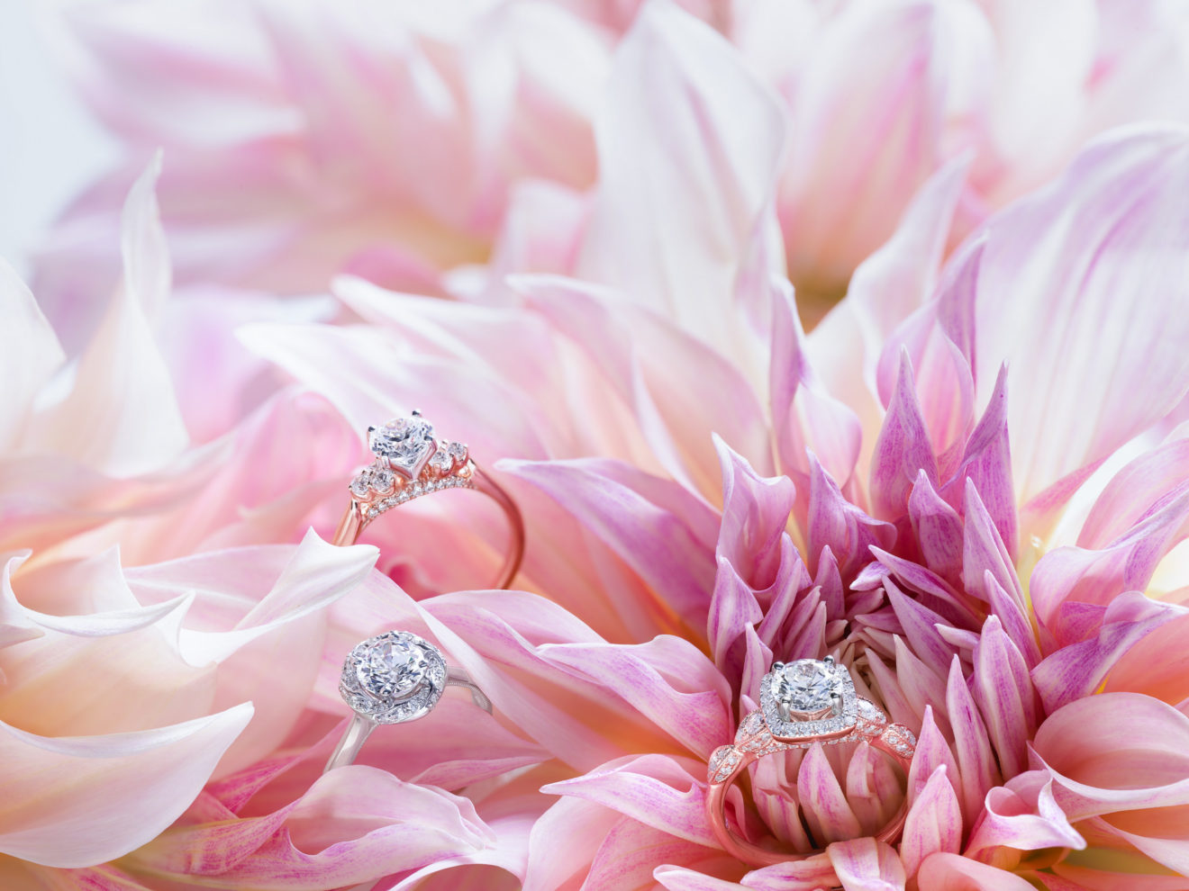 Helzberg Diamonds Partners with Monique Lhuillier to Launch New ...